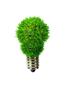 Gibsons Environmental Sustainability Forum
